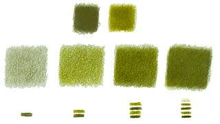 les crayons de couleur de patrick rogelet. Black Bedroom Furniture Sets. Home Design Ideas